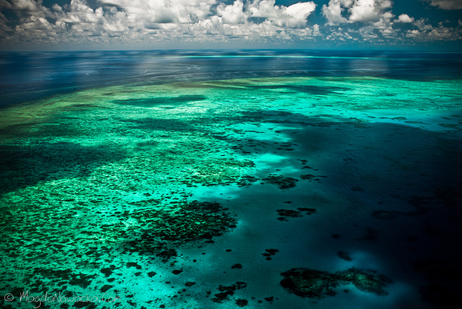 Great Barrier Reef by Magda Nowacka on 500px.com