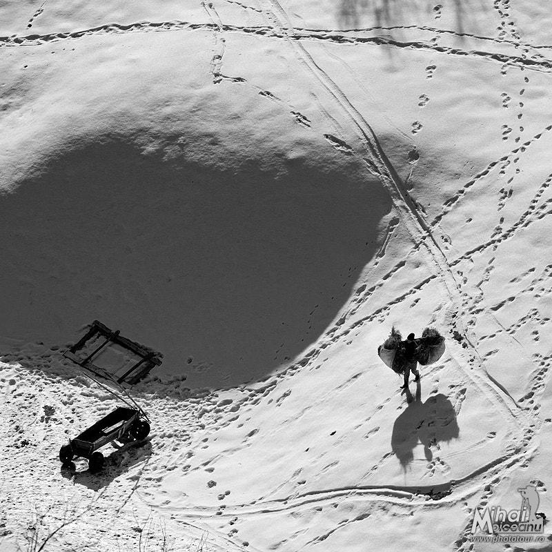 Photograph Balance by Mihai Moiceanu on 500px