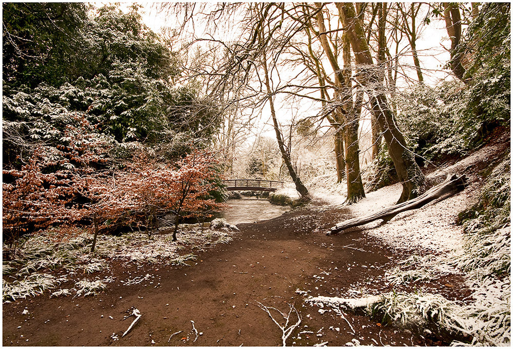 Photograph Snow dusting on the glen by Desmond Daly on 500px