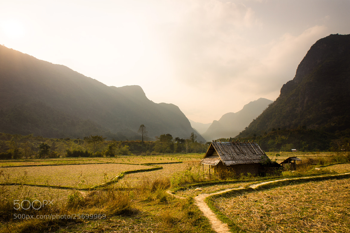 Photograph Rice fields of Ban Na Village, Laos by Mark Bao on 500px