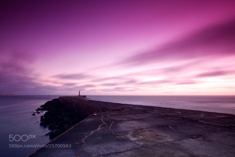 Photograph sunset boulevard by Careca Com K on 500px