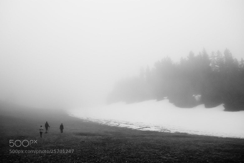 Photograph misty by D K on 500px