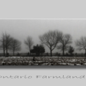 Ontario Farmland by Heather Bashow (HeatherBashow)) on 500px.com