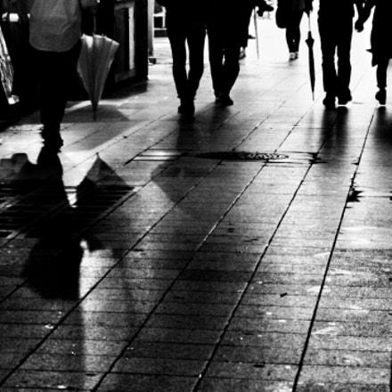 Shadow and Silhouette, Canon EOS KISS DIGITAL N