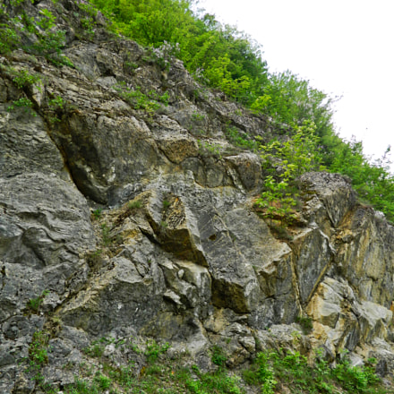 The rock, Nikon COOLPIX L310
