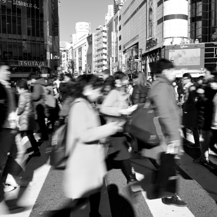 Shinjuku Crossing in Motion, Nikon D810, AF-S Nikkor 24-70mm f/2.8E ED VR