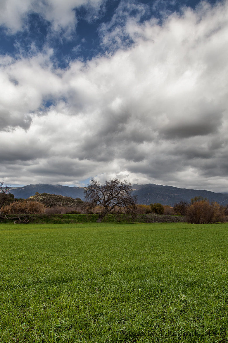 Photograph Clouds over Ojai by Denise Dewire on 500px