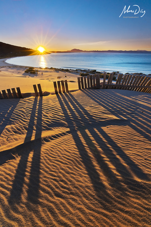 Photograph Morning shadows II by Alonso Díaz on 500px