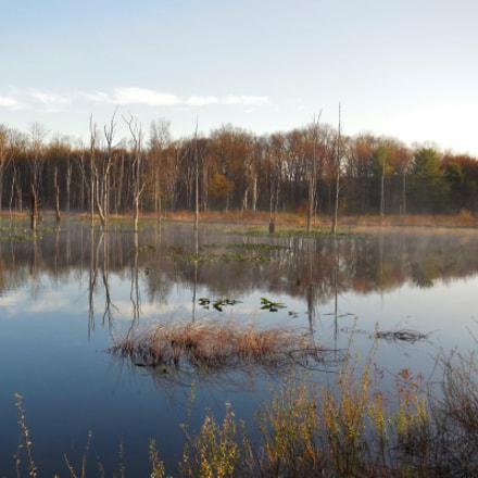 Swamp Reflections, Nikon COOLPIX S6500