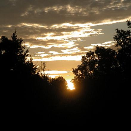 Morning Sunrise, Nikon E5700