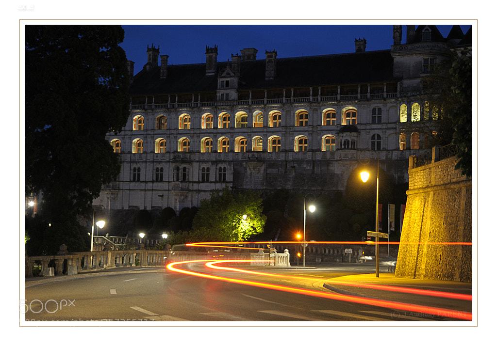 Château de Blois, Nikon D90, AF-S DX VR Zoom-Nikkor 16-85mm f/3.5-5.6G ED