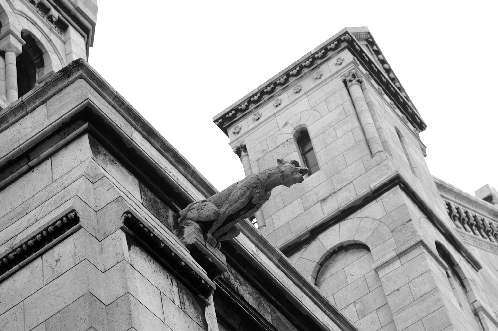 Photograph Gargoyle by ZIO Photographies on 500px