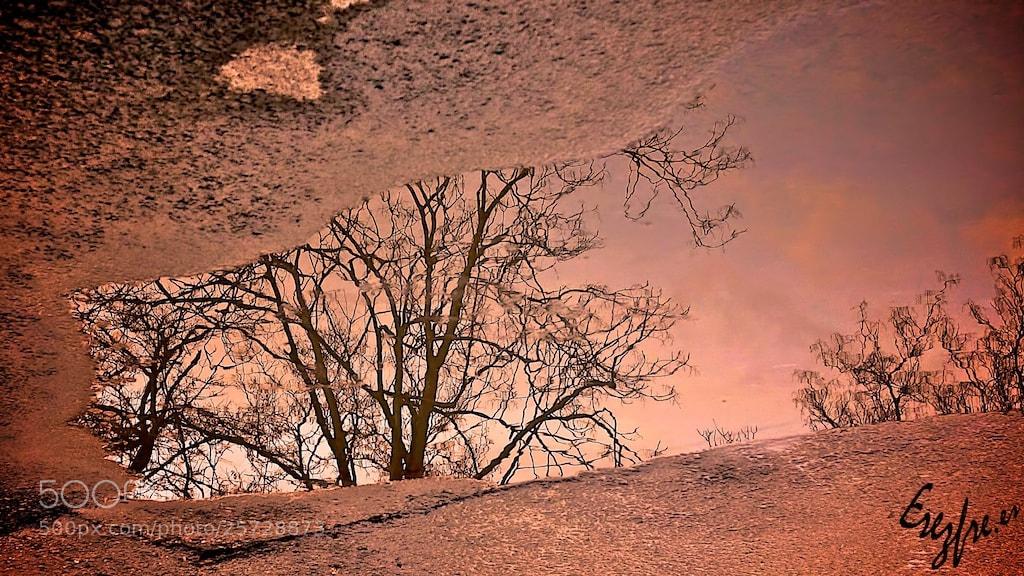 Photograph Tras la tormenta by Afotando Noesgerundio on 500px