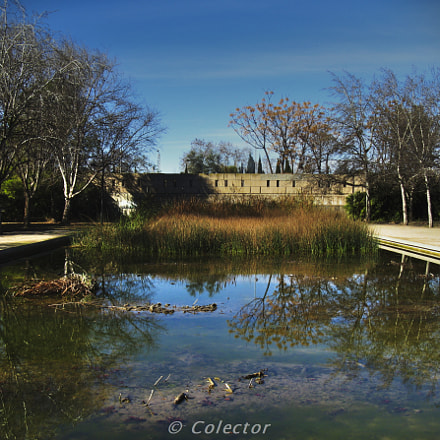 Relax en el estanque, Canon POWERSHOT A720 IS