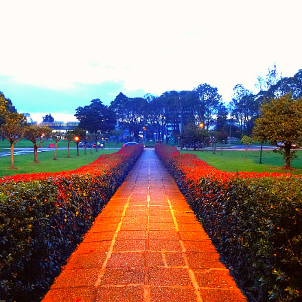 University, Sony DSC-QX10