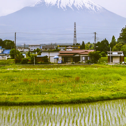 Mount Fuji Rice Paddy, Canon POWERSHOT SD770 IS