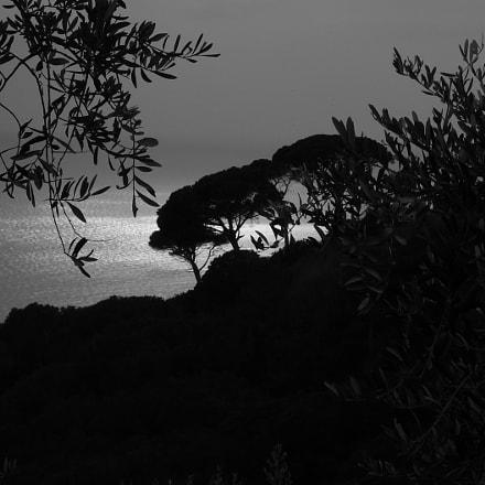 Portofino, Panasonic DMC-FX01