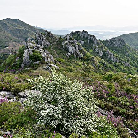 spring of mountains, Nikon D810, Sigma 12-24mm F4.5-5.6 II DG HSM