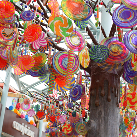 Lollipop trees at RWS, Canon EOS 50D, Canon EF 28mm f/1.8 USM