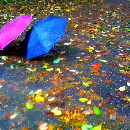 Monsoon colours, Samsung GT-S3653