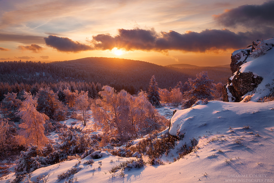 Photograph Winter Sunset by Maxime Courty on 500px