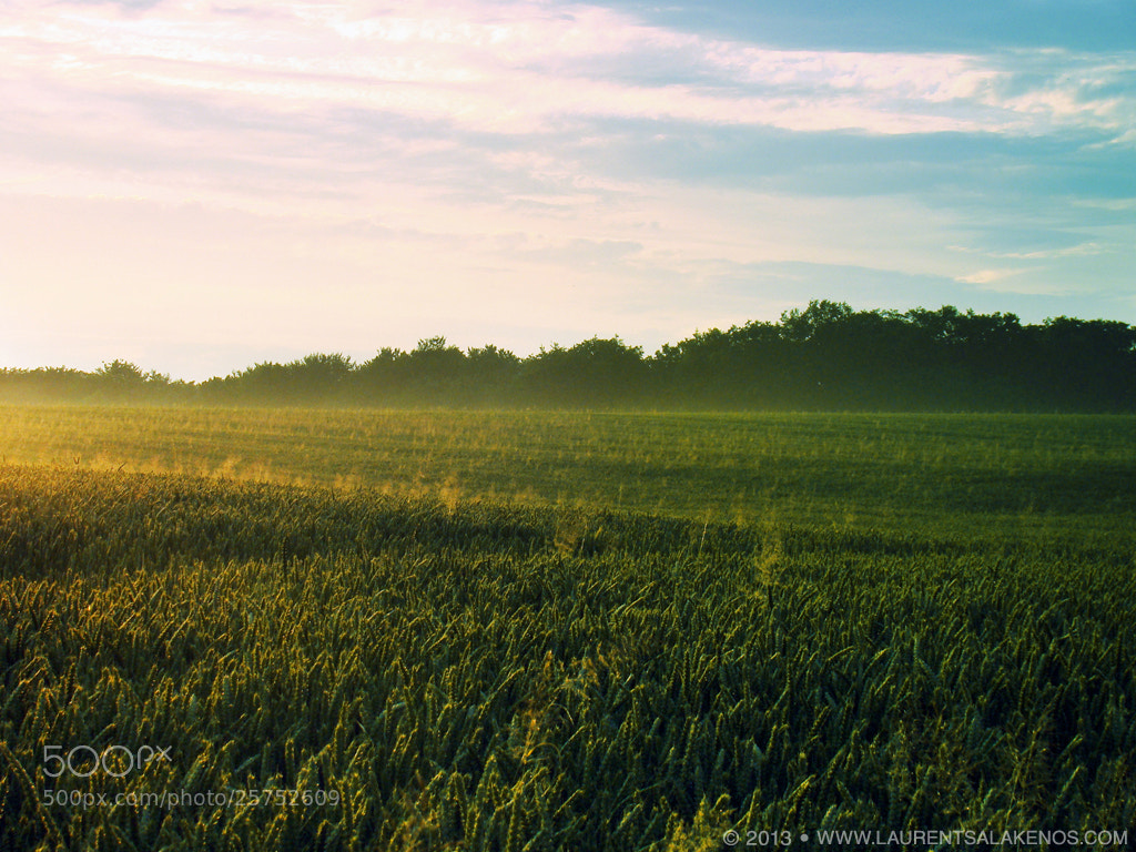 Photograph Belgian countryside by Laurent Salakenos on 500px