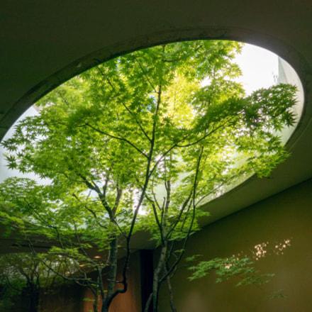 Kahitsukan Museum of Contemporary, Panasonic DMC-TX1