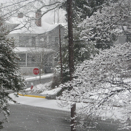 first white Christmas snow, Canon POWERSHOT A550