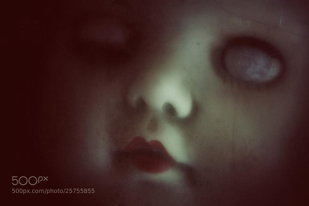 Photograph reborn... by Leila Raymond on 500px