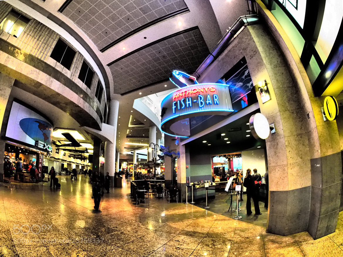 Photograph Fisheye concourse ... by Mark Hufstetler on 500px