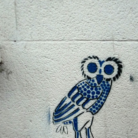 lille owl o, Panasonic DMC-TZ4