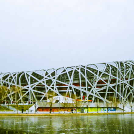 Rainy Bird's Nest, Canon POWERSHOT SD770 IS