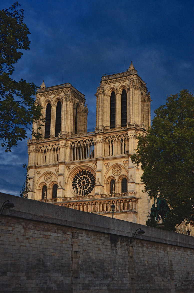 Photograph Notre Dame by alina stancioiu on 500px