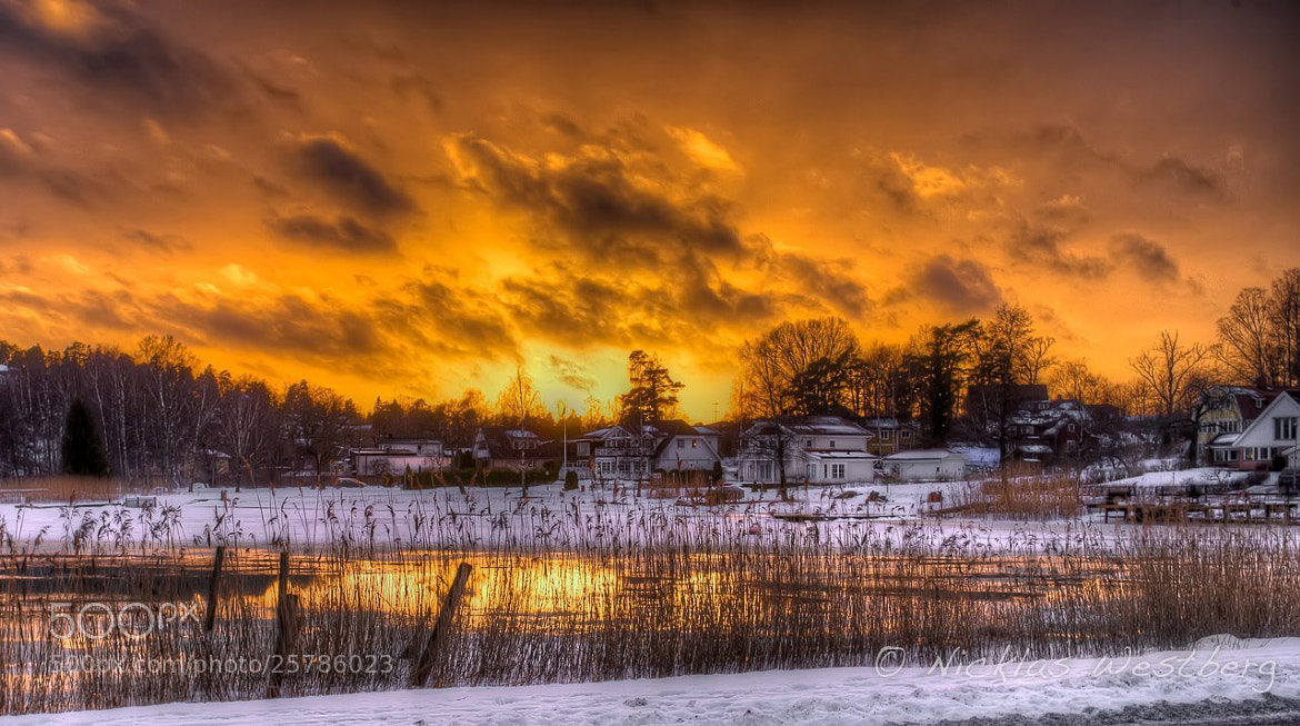 Photograph Yellow sky by Nicklas Westberg on 500px