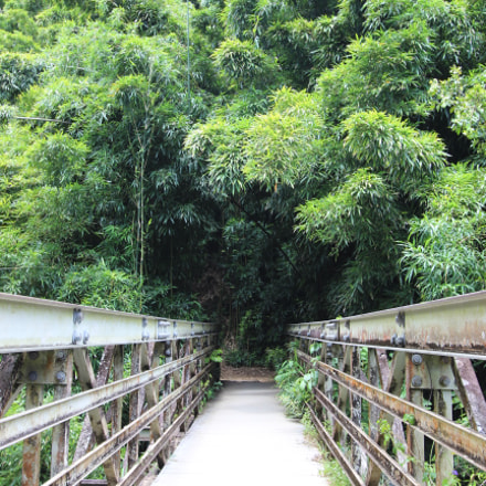 Pipiwai Trail Bridge to, Canon EOS 600D, Canon EF-S 10-22mm f/3.5-4.5 USM