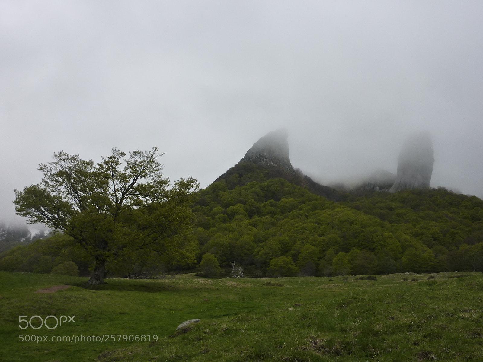 Misty mountain, Panasonic DMC-TZ6