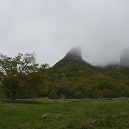 Misty mountain, Panasonic DMC-TZ6
