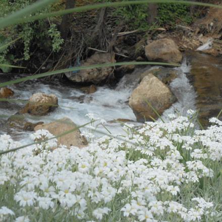 River, Nikon COOLPIX S2700