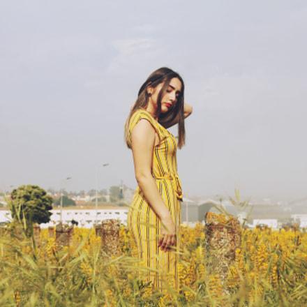 sundress, Canon EOS 1100D, Canon EF 50mm f/1.8 II