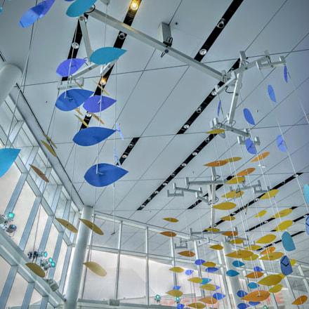 Ripley's Aquarium of Canada, Sony ILCE-6300, Sigma 19mm F2.8 [EX] DN