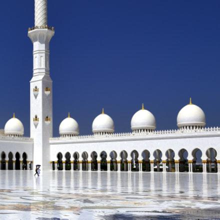谢赫·扎耶德大清真寺, Nikon D810, AF-S Zoom-Nikkor 14-24mm f/2.8G ED