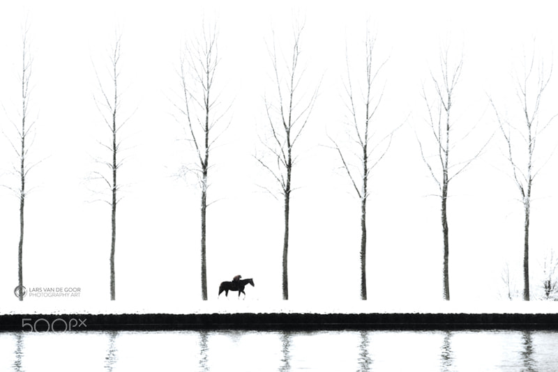 Photograph me and my horse by Lars van de Goor on 500px