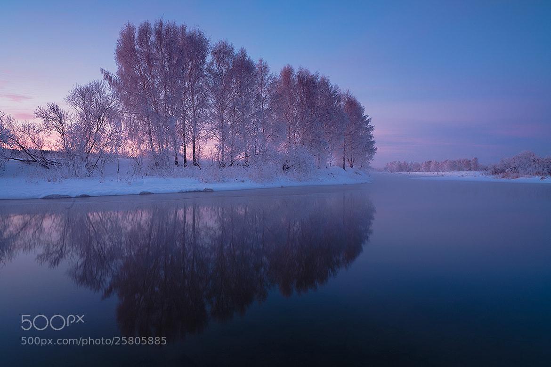 Photograph purple morning, purple mood  by Marat Akhmetvaleev on 500px