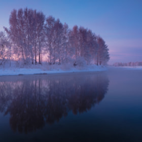 purple morning, purple mood  by Marat Akhmetvaleev (marateaman)) on 500px.com