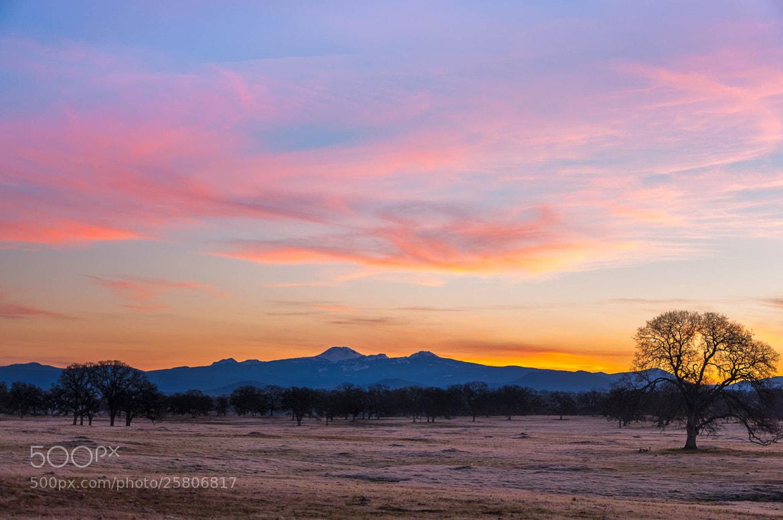 Photograph Oh yeah! (Mt. Lassen Sunrise) by Eric Leslie on 500px