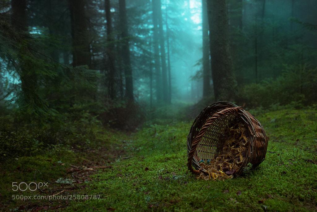 Photograph Little Red is dead by Bastien HAJDUK on 500px