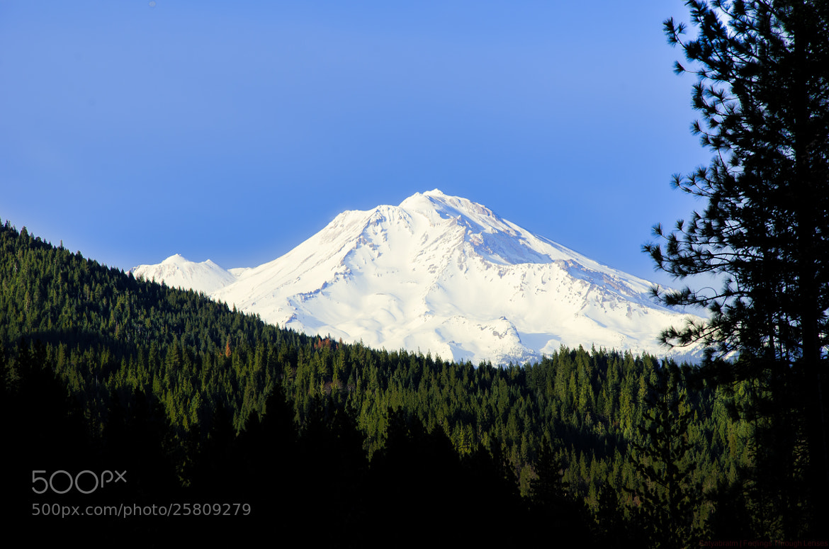 Photograph Mount Shasta by Satya M on 500px