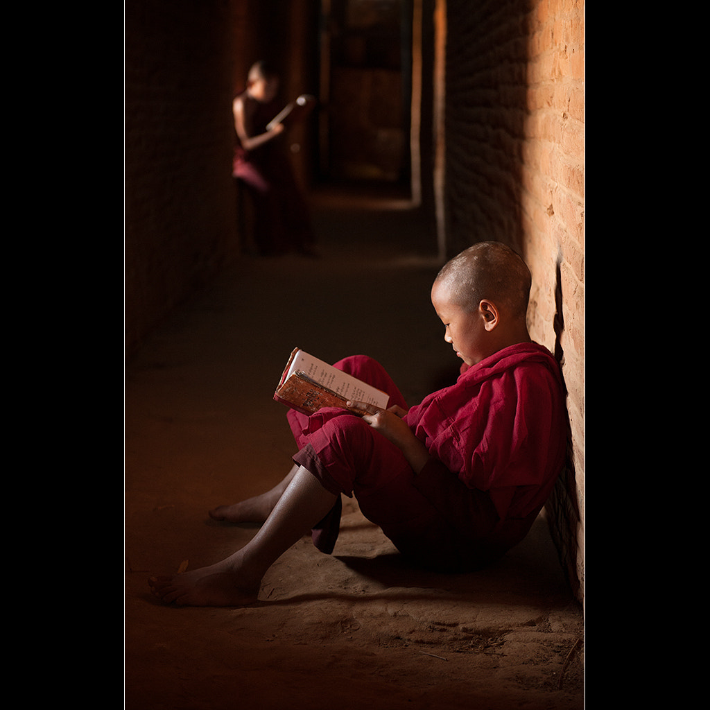 Photograph Studying by Malcolm Fackender on 500px