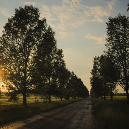 Summer roads, Canon EOS 1100D, Sigma 17-70mm f/2.8-4.5 DC Macro