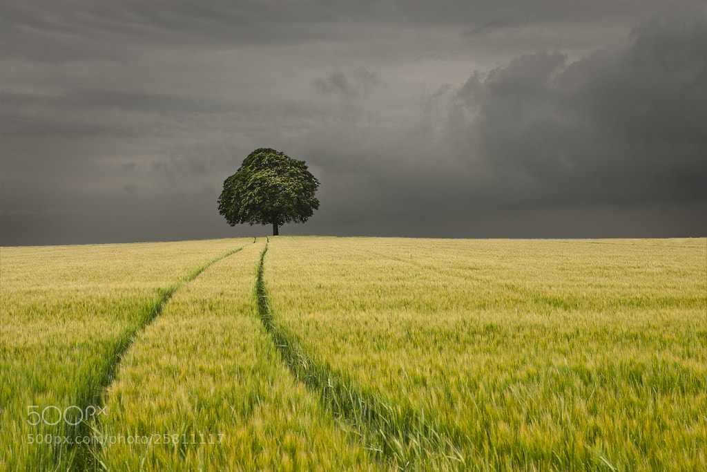 Photograph vers la solitude by armel couette on 500px